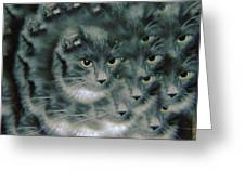 Kitty Portrait  Greeting Card