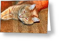 Kitty Relaxing Greeting Card