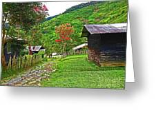Kiwi Village Of Papua Greeting Card