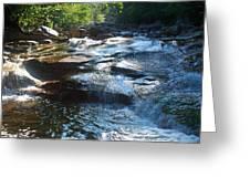 Knee Deep In Mountain Water Greeting Card