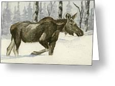 Knee Deep In Snow Greeting Card