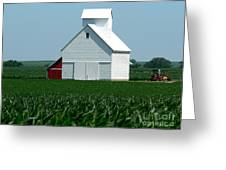 Knee High By The Fourth Of July Greeting Card