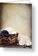 Knitting Supplies Greeting Card by Stephanie Frey
