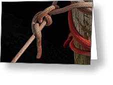 Knot Me - Pink Mooring Ropes Greeting Card