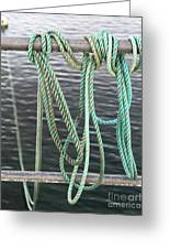 Knot Of My Warf II Greeting Card by Stephen Mitchell