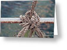 Knot Of My Warf Greeting Card by Stephen Mitchell