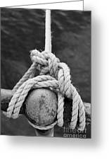 Knot On My Warf Iv Greeting Card by Stephen Mitchell
