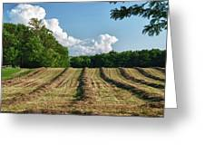 Knox Farm 11625 Greeting Card