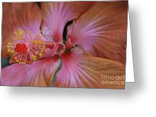 Ko Aloha Aloalo Echoes Of The Soul Exotic Tropical Hibiscus Kula Maui Hawaii Greeting Card