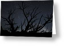 Kodachrome Basin Night Sky 2963 Greeting Card