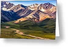 Kodachrome Pass Denali Closeup Greeting Card by Claudia Abbott
