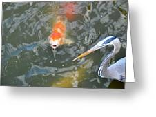 Koi And Great Blue Heron Greeting Card
