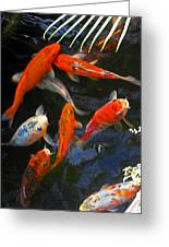 Koi Fish II Greeting Card