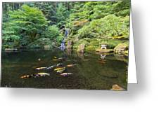 Koi Fish In Waterfall Pond At Japanese Garden Greeting Card