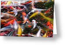Koi Fish Pond Abstract Greeting Card