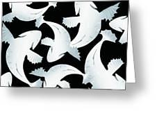 Koi Fish Powder Black - Pearl Greeting Card