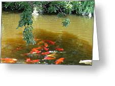 Koi Party Greeting Card