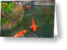 Koi Pond  Greeting Card