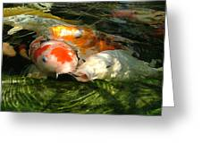 Koi Ripples Greeting Card