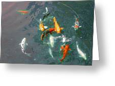 Koi Symphony 1 Stylized Greeting Card