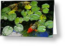Koi With Lily Pads D Greeting Card