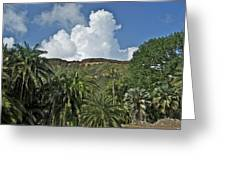 Koko Crater Trail Greeting Card