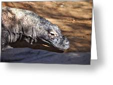Komodo Kountry Greeting Card
