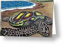 Kona Turtle Greeting Card