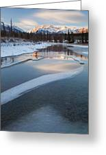 Kootenay Plains Greeting Card