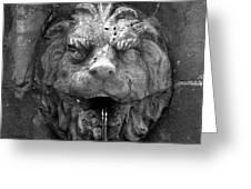 Koreshans Lion Greeting Card