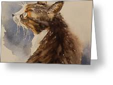 Kotora - My Parents Cat Greeting Card