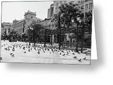 Kotzia Square, Athens Greeting Card