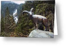 Krimml Waterfall Greeting Card