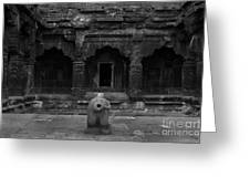 Krishna Devi Temple Greeting Card