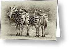 Kruger Greeting Card