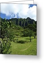Kualoa Orchard Greeting Card