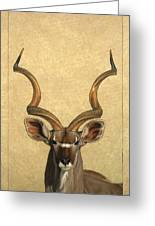 Kudu Greeting Card