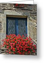 La Gacilly, Morbihan, Brittany, France, Window Greeting Card