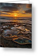 La Jolla Tidepools Greeting Card by Peter Tellone