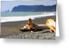 La Push Beach  Greeting Card