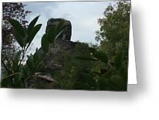 La Roche Nature France Greeting Card