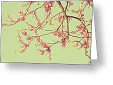 Le Rose' Arbre Greeting Card