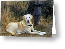 Lab And Fire Hydrant Greeting Card