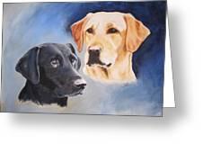 Labrador Retrievers Zoom And Kes Greeting Card