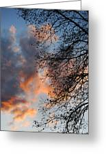 Lace In The Sunset Greeting Card