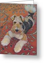 Wire-haried Fox Terrier Greeting Card