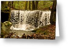 Lacy Waterfall Greeting Card