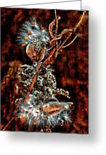 Lady Of The Dance II  Greeting Card