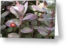 Ladybug Garden Greeting Card