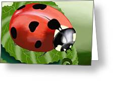 Ladybug On Leaf Greeting Card